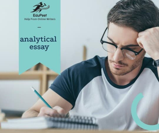 Custom analytical essay