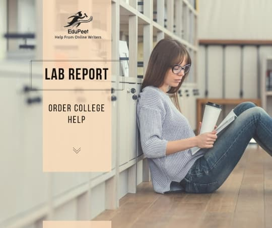 buy lab report